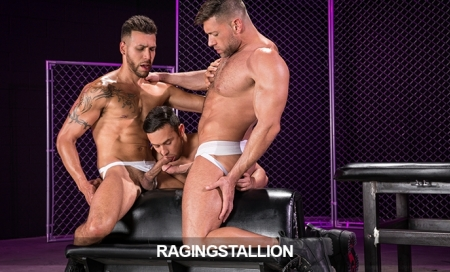Raging Stallion:  Just 9.95 - Ends Today!